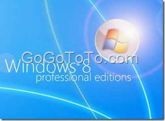 Windows_8_Professional_Edition_by_mufflerexoz